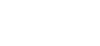 Fleet Focus